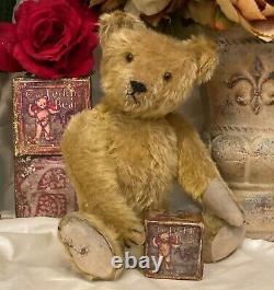 13 Antique German Teddy Bear With Gold Mohair, Excelsior Stuffed
