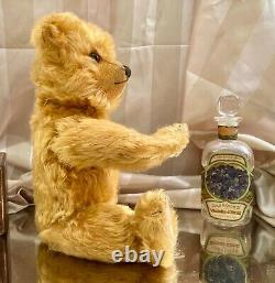 13 Rare Early 1925 Outstanding Chiltern Teddy Bear Full, Long, Gold Mohair