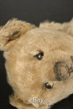 1906 Steiff Teddy Bear, Blank Ear Button, Excelsior Stuffing, Blond Mohair