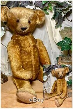 21 Large American, Pre-wwi 1912- 1914 Treasured Antique Ideal Teddy Bear