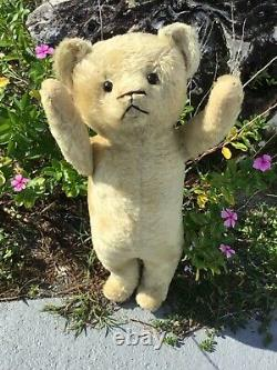 24 EARLY AMERICAN 1910s ELECTRIC EYE TEDDY BEAR BEIGE MOHAIR JOINTED ARMS