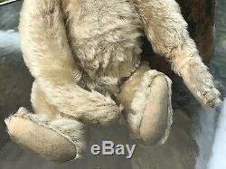 ANTIQUE WHITE MOHAIR 12 EARLY STEIFF TEDDY BEAR With PERSONALITY CIRCA 1905