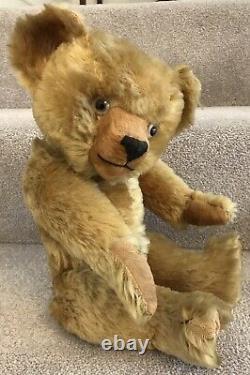 Antique Golden Mohair Jointed Teddy Bear Velvet Snout & Pads 16 C. 1930s