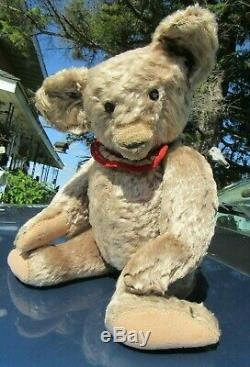 Antique Mohair Teddy Bear Very Rare Early 1900's English Peacock Toy Hecla Aetna