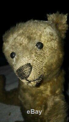 Antique Steiff Early 1900s metal Button German jointed mohair steiff teddy bear