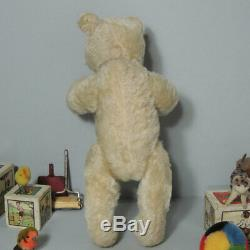 Antique Steiff White Mohair Teddy Bear 1920's with FF-button
