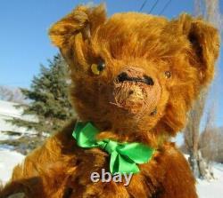 Antique Vintage Mohair Teddy Bear Rare Cinnamon Red 16 Gund Knickerbocker 1930