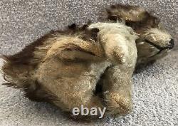 Antique Vintage Steiff Molly Type Mohair Dog Soft Toy Teddy Bear Friend 1930s