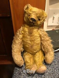 Antique bing Teddy Bear Golden Long Mohair Circa1900