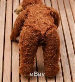 Charming 12 JOPI Josef Pitrmann redbrown mohair teddy bear 1930's