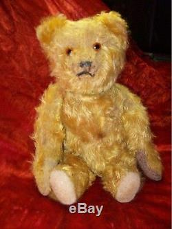 Charming Antique Mohair 14 inch 1920's Schuco Teddy Bear