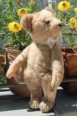 Charming prewar 12 German Bing beige mohair humpback Teddy 1920's