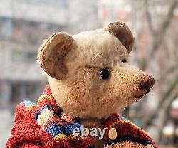 Cute 14 German Steiff blond Mohair humpback Teddy Bear shoe button eyes 1910