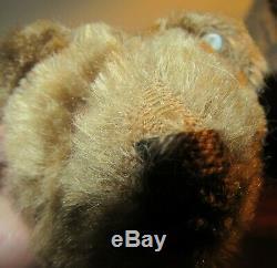 Early Blank Button Antique Steiff Mohair Rare Teddy Bear on Metal Wheels