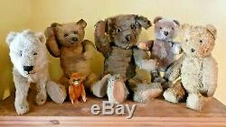 FABULOUS 17 VINTAGE ANTIQUE 1920's CHAD VALLEY BROWN MOHAIR TEDDY BEAR SOFT TOY