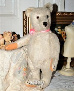 GORGEOUS STEIFF WHITE MOHAIR TEDDY BEAR BLANK BUTTON 13 1930's