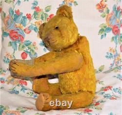 Gorgeous 13 German yellowgold Mohair humpback Teddy Steiff Bing Cramer 1920