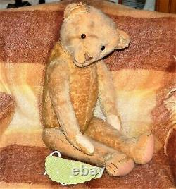 Gorgeous 25 Blond Mohair Humpback Bing Teddy Bear From 1920