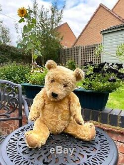 Gorgeous Big Cuddly Golden Mohair Chiltern Hugmee Teddy Bear 24