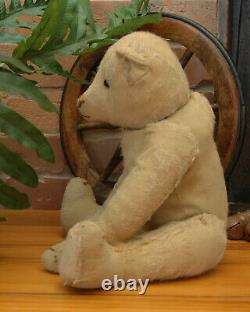 Handsome Well Loved 15 Antique Steiff Teddy Bear c1908-10