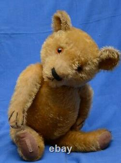 Lovely 1930s Antique 20 Golden Mohair Chad Valley Magna Teddy Bear With Label
