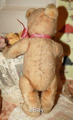 Lovely antique 13 Josef Pitrmann JOPI mohair humpback teddy bear 1920s