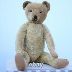 Pre-War Antique Bing Teddy Bear 1910 Character Hunchback Mohair Bear w Cat Ours