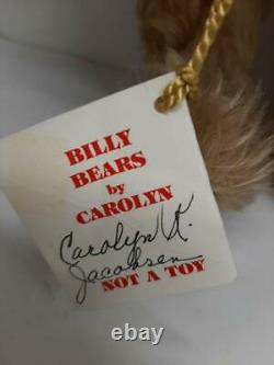 Rare Vintage 14 Mohair Teddy Bear by Artist Carolyn Jacobsen, Nodder head