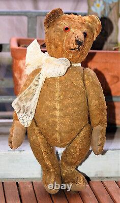 So cute 13 German cottonsilk plush humpback Steiff, Bing Teddy 1930's