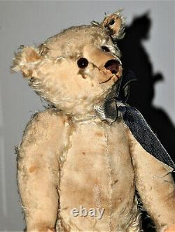 Stunning 19 German humpback white mohair Steiff character Teddy w. Button