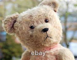 Stunning 29 German PETZ Anton Kiesewetter pink mohair teddy bear 1930's