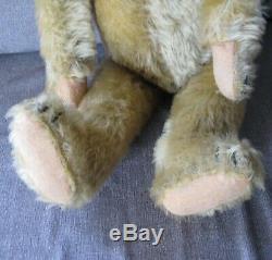 Very Rare 1925 Large 24 German Pale Gold Mohair Big Head Teddy Bear/Teddybär