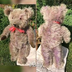 Wisty Rare 1920's/30's Purple Mohair Bear Old Antique American Teddy