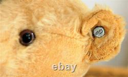 Wonderful 14 German goldblond mohair humpback Steiff Teddy w. Prewar button
